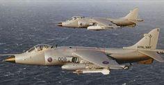 British Navy Harriers Navy Aircraft, Military Aircraft, British Aerospace, Indian Navy, Falklands War, Military Weapons, Royal Air Force, Aviation Art, Royal Navy