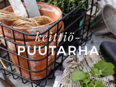 One pot -pasta – helppo kasvisruoka Härkiksestä Pot Pasta, Joko, Coleslaw, Feta, Food And Drink, Chicken, Drinks, Drinking, Beverages