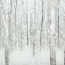 Fototapete - Birches in Winter