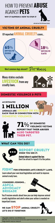 how is animal abuse linked to Common sense may lead some of us to think that if a person is abusive toward  an animal, they may potentially be violent toward a person, but.