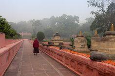 Foggy, Bodhgaya by Marji Lang, via Flickr