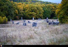 Poiana cu statui Din padurile Ciolanului, Buzau © Florin Lungu