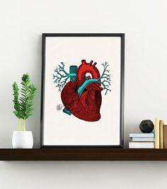 Art print Blue and red Human Heart -Science prints A4 wall art- Anatomy prints wall decor. Heart wall art, Gift, Love gift, giclee art WP020