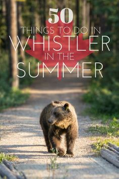 Whistler in British Columbia in Canada is one of the country's - and the world's - most popular resorts to visit. It's know for its winter activities but Whistler comes alive when the snow begins to melt. Here's 50 things to do in Whistler in the summer. Quebec, Places To Travel, Places To Visit, Travel Destinations, Stuff To Do, Things To Do, Summer Things, Toronto, Canada Summer
