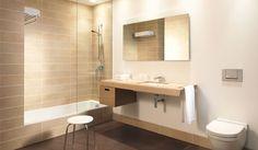 Sunken Tub Shower Combo Bathroom Pinterest