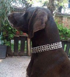 Triple-Choke-Chain-dog-Collar-Martingale-Chrome-steel-Dog-Control-Free-P-P