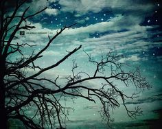 Hey, I found this really awesome Etsy listing at https://www.etsy.com/listing/56052164/night-sky-fine-art-photography-original