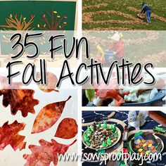 35 Fun Fall Activities from my mommy blogger inspirations! Hope you enjoy! www.sowsproutplay.com
