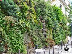 Plantwall-Paris-Champs-Elysees détail d'une façade végétale
