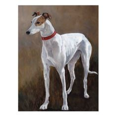 Image result for Greyhound In Arts