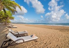 A luxurious, all-inclusive stay in a suite at a boutique resort for adults on a secluded Gold Shore beach - includes plenty of discounts and perks