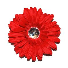 Squishy cat Products Sprinkles Collar Accessories, Red Queen, 4-Inch, Red Gerber Daisy *** Awesome cat product. Click the image : Cat Collar, Harness and Leash