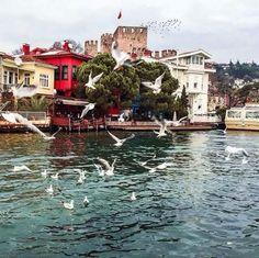 Anadolu Hisarı, Istanbul