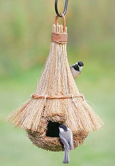 Love this bird house
