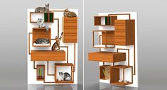Multifunction Cat Climbing Wall Concept from Spase Janevski Love this and want to create