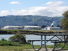 have a seat at Monaco Reserve and watch the comings & goings at NZs 4th busiest airport, Nelson.
