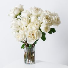 Fresh White Rose Bouquets | Roseur Fine Roses Sweet Salt is a classic reimagined. Choose from 12 or 24 modern roses, arranged by hand and placed in a Signature Gift Box.  Your indulgent experience is completed with our Liquid Rose Food, Florography and Handwritten Gift Card. Color: Malt Ivory Florography: Time + Distance  Your delivery of Sweet Salt includes: •FREE Next-Day Shipping • 100% Freshness Guarantee #RoseurFineRoses #Roseur #ArtfulLiving | Roseur.com