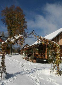 Wolimierz (Poland) Poland, Cabin, House Styles, Places, Garden, Inspiration, Outdoor, Home Decor, Biblical Inspiration