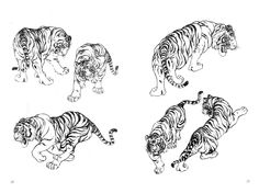 tiger - tiger The Effective Pictures We Offer You About compass tattoo A quality picture can tell you many - Tribal Tattoos, Geometric Tattoo Arm, Body Art Tattoos, Hand Tattoos, Sleeve Tattoos, Tatoos, Tattoo Drawings, Tattoo Ink, Arm Tattoo