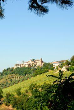 Panoramica su Ponzano  #marcafermana #ponzanodifermo #fermo #marche