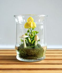 Yellow Lady Slipper Orchid Terrarium in Recycled by MissMossGifts, $28.00