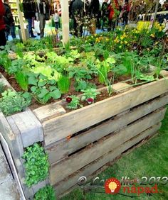 ideas pallets raised garden beds To be able to have a wonderful Modern Garden Decoration, it is useful … Cheap Raised Garden Beds, Raised Garden Bed Plans, Raised Vegetable Gardens, Building Raised Garden Beds, Raised Beds, Veggie Gardens, Garden Bed Layout, Raised Planter, Garden Design