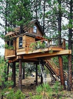 How to Build a Tree House - Life ideas