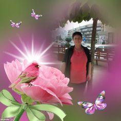 Tess - Pink As Ever Pink, Pink Hair, Roses
