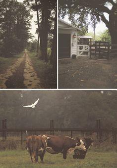 Backcountry Texas