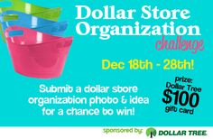 Dollar Store Organization Challenge (Win $100 Gift Card to Dollar Tree!)