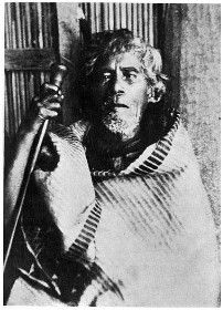 Tumakoha, the ArawaTohunga. This learned man, a priest, mystic, bard and genealogist, was the highest tohunga of the old religion in the Arawa tribe surviving in modern times. He lived at Lake Okataina, and died about 1895. Like some other great tohungas he was not tattooed, because he was highly tapu.