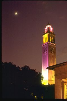 LSU Clock Tower Purple and Gold