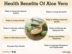Health and Fitness: Benefits of Aloe Vera Aloe Benefits, Coconut Health Benefits, Facial Benefits, Aloe Vera For Skin, Aloe Vera Gel, Aloe Vera Powder, Stomach Ulcers, Cold Home Remedies, Natural Cures