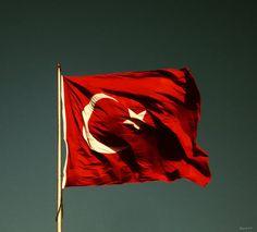 ASiL TURK BAYRAGI