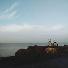 "Nelson Cruz de Oliveira on Instagram: ""Bike... #igers_lisboa #igerslisboa #igerslx #igersportugal #igers #igersworldwide #ig_europe #wu_portugal #lisboa #lisbon #vsco #vscocam #vscogrid #bike #fixie #singlespeed #commuter #bikeporn #fixedlife #fixedbike #fixieporn #fixedgear #urban #urbanscape #fuji #x100s #fujix #fujix100s #p3top"""