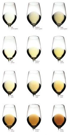 LOS COLORES DEL VINO   Mirar el vino en la copa inclinada nos produce placer al notar qué brillo tiene, cómo refleja la luz, y tratar de...