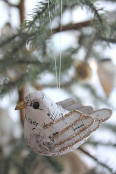 Enchanting birdie!