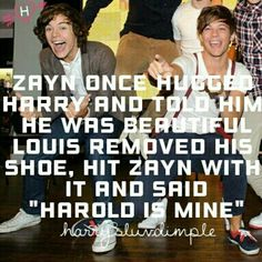 Larry is real One Direction Humor, One Direction Memes, One Direction Pictures, I Love One Direction, Louis Tomlinsom, Louis And Harry, Sassy Louis, Harry Styles Facts, Larry Shippers