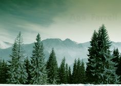 Mountain photography - Sleeping Knight - Folk Art, Winter Photo, Tatry, Folklore, Legend, Pine Trees, Green, Forest Photography on Etsy, $15.00