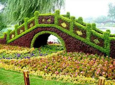 Just for fun, Amazing Topiary Art - Refreshing The Home