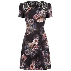 Oasis Gothic Bloom Lace Skater Dress, Multi/Black (€57) ❤ liked on Polyvore featuring dresses, floral midi dress, long-sleeve mini dress, party dresses, cutout maxi dresses and floral skater dress