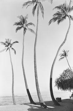 Waikiki No. 1, 1979, Henry Wessel.