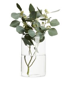 Side image of Arket extra large jar vase in white Vase, White Aesthetic, Handmade Home Decor, Inspirational Gifts, Glass Jars, Watercolor Flowers, Beautiful Flowers, Gold Flowers, Flower Art