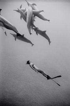 exploring with dolphins scuba diving snorkeling ocean life Girls Swimming, Shark Swimming, Mermaid Swimming, Mundo Animal, Jolie Photo, Underwater Photography, Ocean Life, Marine Life, Under The Sea