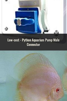 Fish & Aquariums Realistic Python Aquarium Pump Male Connector