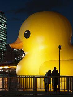 Rubber duck has came Osaka again, until December 25th. As a part of the illumination event, OSAKA HIKARI RENAISSANCE 2009.   http://www.florentijnhofman.nl/dev/project.php?id=154