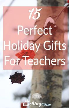15 Perfect Holiday Gifts with your teacher friends and family, or any teacher in your life :) Great deals! Free Teaching Resources, Teaching Tips, Your Teacher, Teacher Gifts, Education Degree, Education College, Teaching English Online, Importance Of Time Management, Teaching Grammar