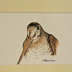 Dessin aquarellé de l'artiste Nathalie Charlier-Coutant Owl, Bird, Animals, Watercolor Drawing, Artist, Animales, Animaux, Owls, Animais