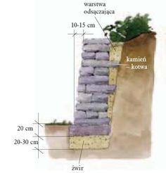 murki w ogrodzie - Szukaj w Google Google, Gardening, Lawn And Garden, Yard Landscaping, Horticulture