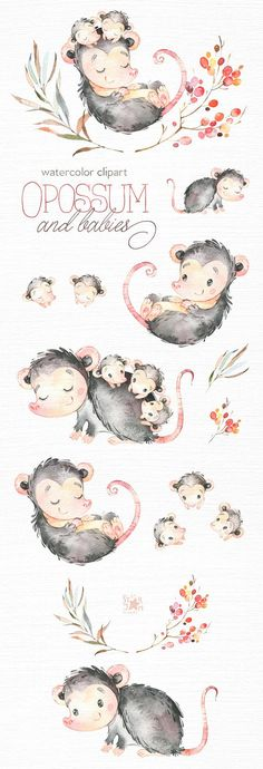 Opossum And Babies. Watercolor animals clip art wild native